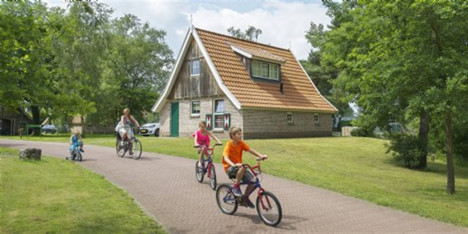 Landal Landgoed De Hellendoornse Berg | 4-Pers....