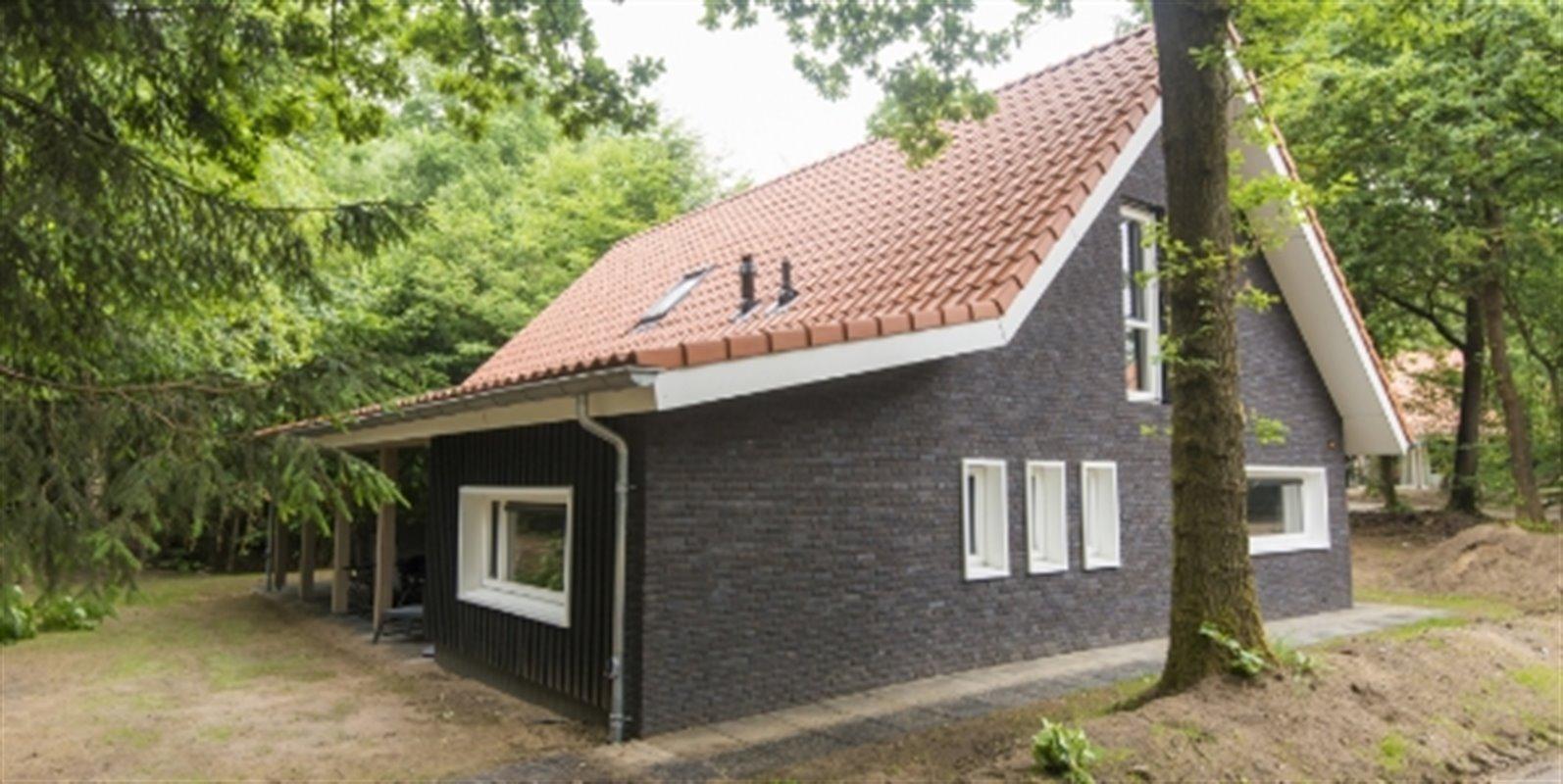 Landal Miggelenberg | 12-Pers.-Ferienhaus - Lux...