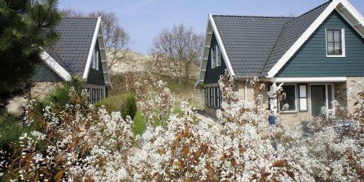 Ferienhaus Duinpark  t Hof van Haamstede - 8-Pers.-Ferienhaus (2596948), Burgh Haamstede, , Seeland, Niederlande, Bild 10