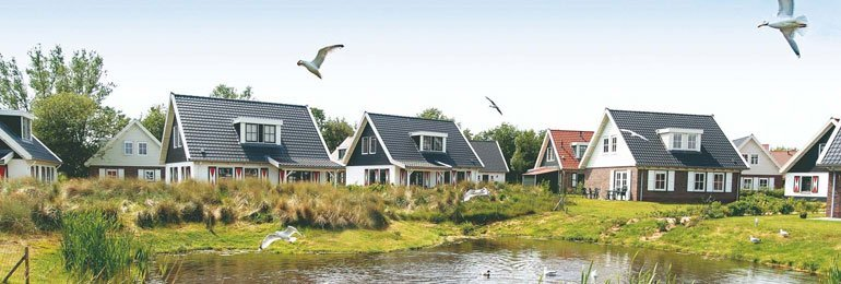 Ferienhaus Duinpark  t Hof van Haamstede - 8-Pers.-Ferienhaus (2596948), Burgh Haamstede, , Seeland, Niederlande, Bild 6