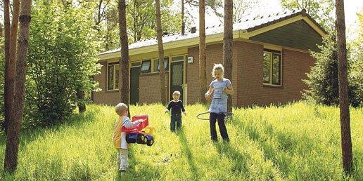 Ferienhaus Heihaas - 6-Pers.-Ferienhaus - Luxus (354956), Putten, Veluwe, Gelderland, Niederlande, Bild 13