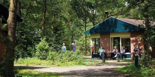 Ferienhaus Heihaas - 6-Pers.-Ferienhaus - Luxus (354956), Putten, Veluwe, Gelderland, Niederlande, Bild 8