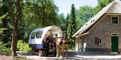 Ferienhaus Het Land van Bartje - 4-Pers.-Chalet-Caravan (355023), Ees, , Drenthe, Niederlande, Bild 16