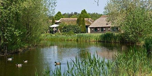Ferienhaus De Veluwse Hoevegaerde - 4-Pers.-Ferienhaus - Luxus (355238), Putten, , Gelderland, Niederlande, Bild 9