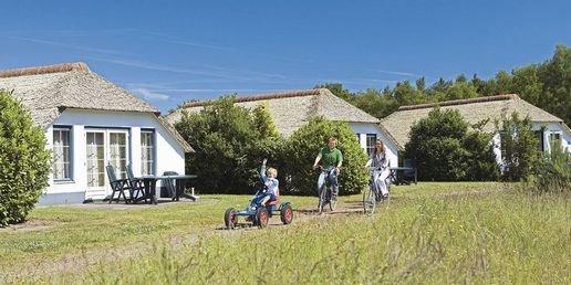 Ferienhaus De Veluwse Hoevegaerde - 4-Pers.-Ferienhaus - Luxus (355238), Putten, , Gelderland, Niederlande, Bild 19