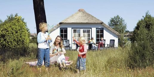 Ferienhaus De Veluwse Hoevegaerde - 4-Pers.-Ferienhaus - Luxus (355238), Putten, , Gelderland, Niederlande, Bild 16