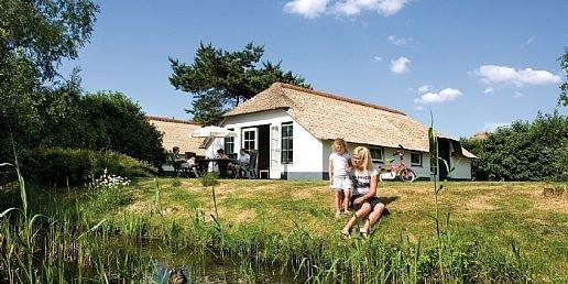 Ferienhaus De Veluwse Hoevegaerde - 4-Pers.-Ferienhaus - Luxus (355238), Putten, , Gelderland, Niederlande, Bild 7